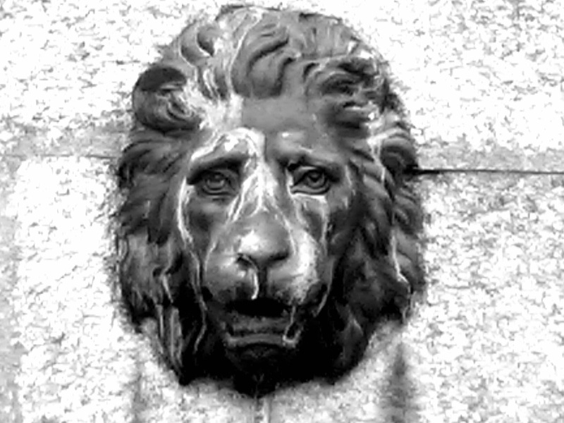 Mournfull Lion in Merrion Park