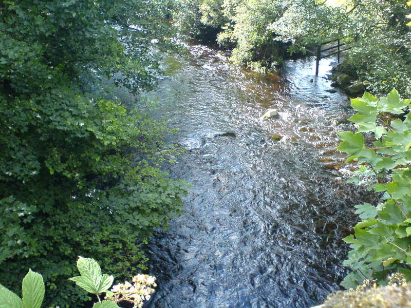 Rippling Stream near Avoca